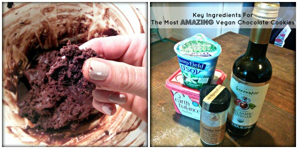 The Most Amazing Vegan Chocolate Cookies Key Ingredients