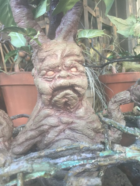 Mandrake Mandragora Wizarding World Harry Potter Universal Studios Orlando Florida Forbidden Journey
