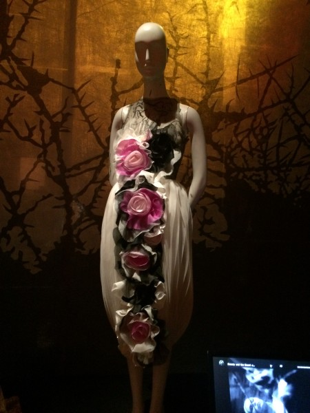 Rose Dress Beauty and the Beast